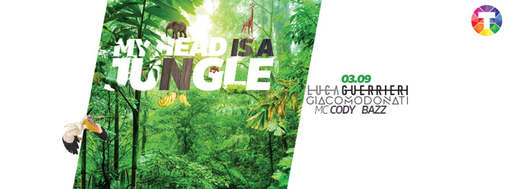 - My Head Is A Jungle #jungleparty